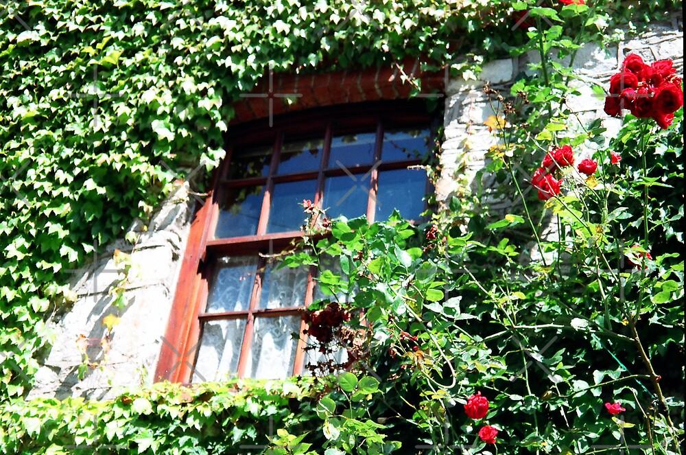 Irish Window by Kymbo