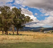 Rural View on Gundy Road, Scone NSW, Australia by Allport Photography