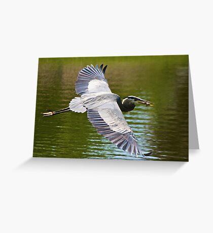The Bird Greeting Card