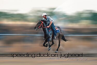 Speeding Duck on Jughead © Vicki Ferrari by Vicki Ferrari