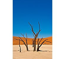 Deadvlei (II) Photographic Print