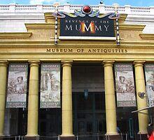 Revenge of the Mummy, Universal Studios Florida by coasterfan94
