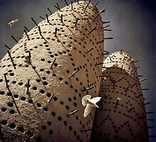 Arabian Pigeon Towers (Colour) by Michiel de Lange