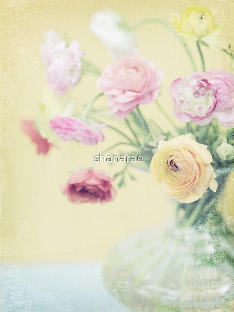 Ranunculas on Yellow by shanarae