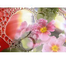Primrose, oil and water abstract Photographic Print