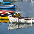 Lyme Regis Harbour, Lyme, Dorset UK by lynn carter