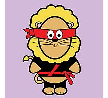 Victor the ninja Photographic Print