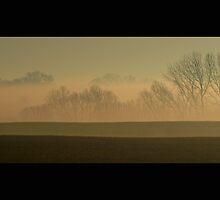 My Morning by Rachael D