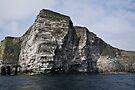 Noss Cliffs by Richard Ion