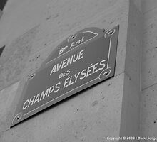 Champs Elysees by David Songco