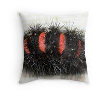 Orange Striped Wooly Worm Throw Pillow