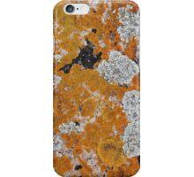 Liken Lichen 2 iPhone Case/Skin