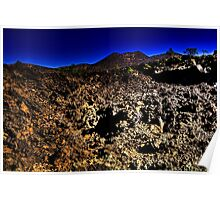 Bonito Lava Flow with Sunset Crater Poster