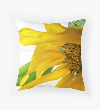 But there is nothing impossible.... Throw Pillow