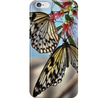A pair of kites iPhone Case/Skin