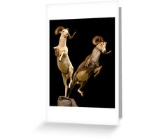 Leaping Rams Greeting Card