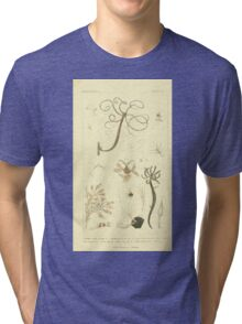 The Animal Kingdom by Georges Cuvier, PA Latreille, and Henry McMurtrie 1834  557 - Zoophytes Plant-Like Animals Tri-blend T-Shirt