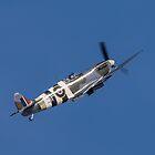 Supermarine Spitfire by Lee Wilson
