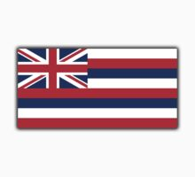 Flag of Hawaii, Hawaiin Flag, State flags of America, USA Kids Clothes