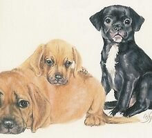 Puggle Puppies by BarbBarcikKeith
