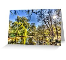 The Pond Side Trees Greeting Card