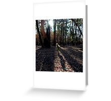 Untitled 4 Greeting Card