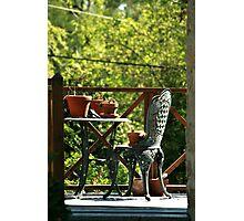 Backyard Chair And Table Photographic Print