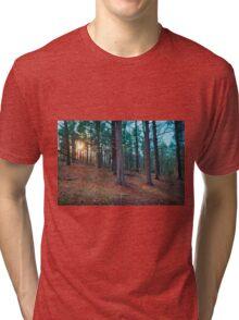 Spring Sunshine at Fort Washington State Park Tri-blend T-Shirt