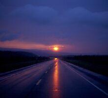 Midnight Sun by Dave Hampton