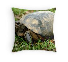 Box Turtle on the Run Throw Pillow