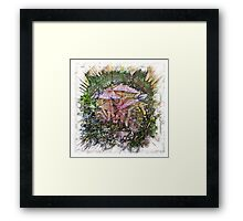 The Atlas of Dreams - Color Plate 176 Framed Print