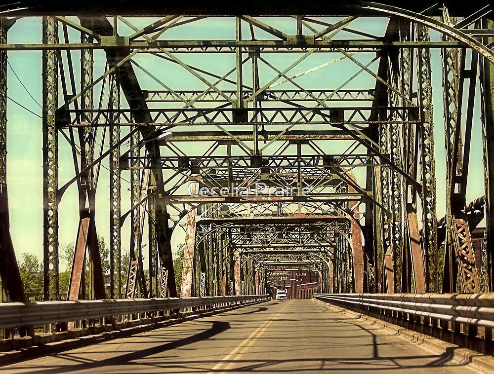 A Long Road Home by Cecelia Prairie