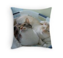 Basket  Bliss Throw Pillow