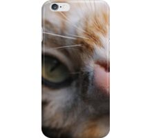 Playful Kitty iPhone Case/Skin