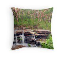Natural Falls Throw Pillow