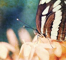 """""""Love is like a butterfly, it goes where it pleases and it pleases wherever it goes."""" by BryanLee"""