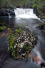 Cephissus Creek by Travis Easton