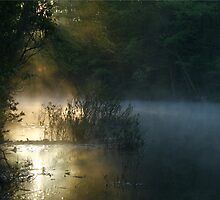 DAWN AT CLARKS CREEK by Lori Deiter