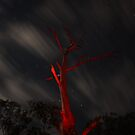 Red Dead Tree by Matt  Williams