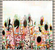 Burberry Daisies by Darlene Lankford Honeycutt