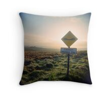 Hidden Dips Throw Pillow