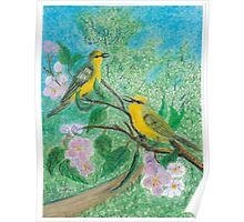 Yellow warblers -oil pastels Poster