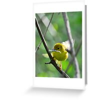 Feathering the Nest Greeting Card