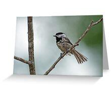 Drip Dry Chickadee Greeting Card