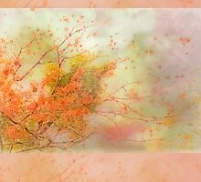 """Essence of Life"" Scarf~Pastel Orange Border by Susan Werby"