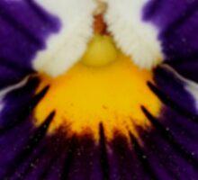 Viola - JUSTART © Sticker