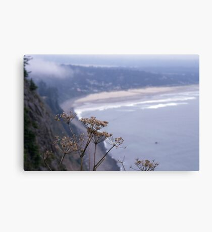 We live in so much space. Canvas Print