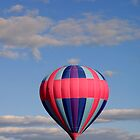 Blue & Pink Balloon by Abbey Walls