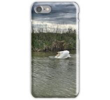 Goose Chase, Kennet And Avon Canal iPhone Case/Skin