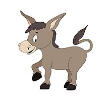 Cartoon Donkey Photographic Print